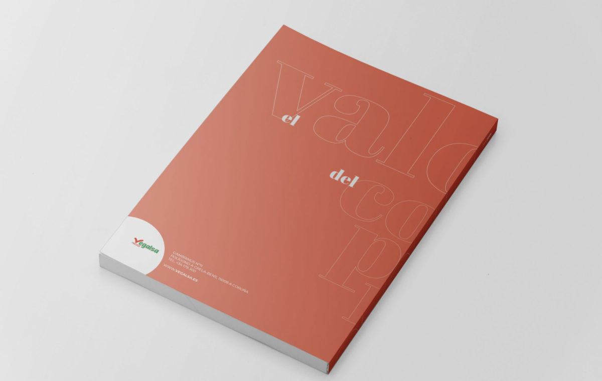 Vegalsa_Memoria Anual 2019_v01-cubierta-CONTRA